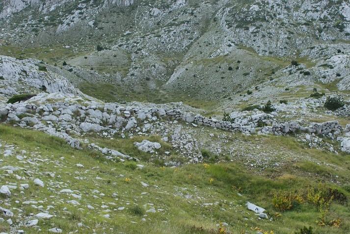 sheuibardhe